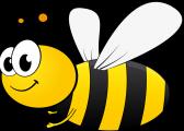 Les ruches de l'école Saint-Joseph!